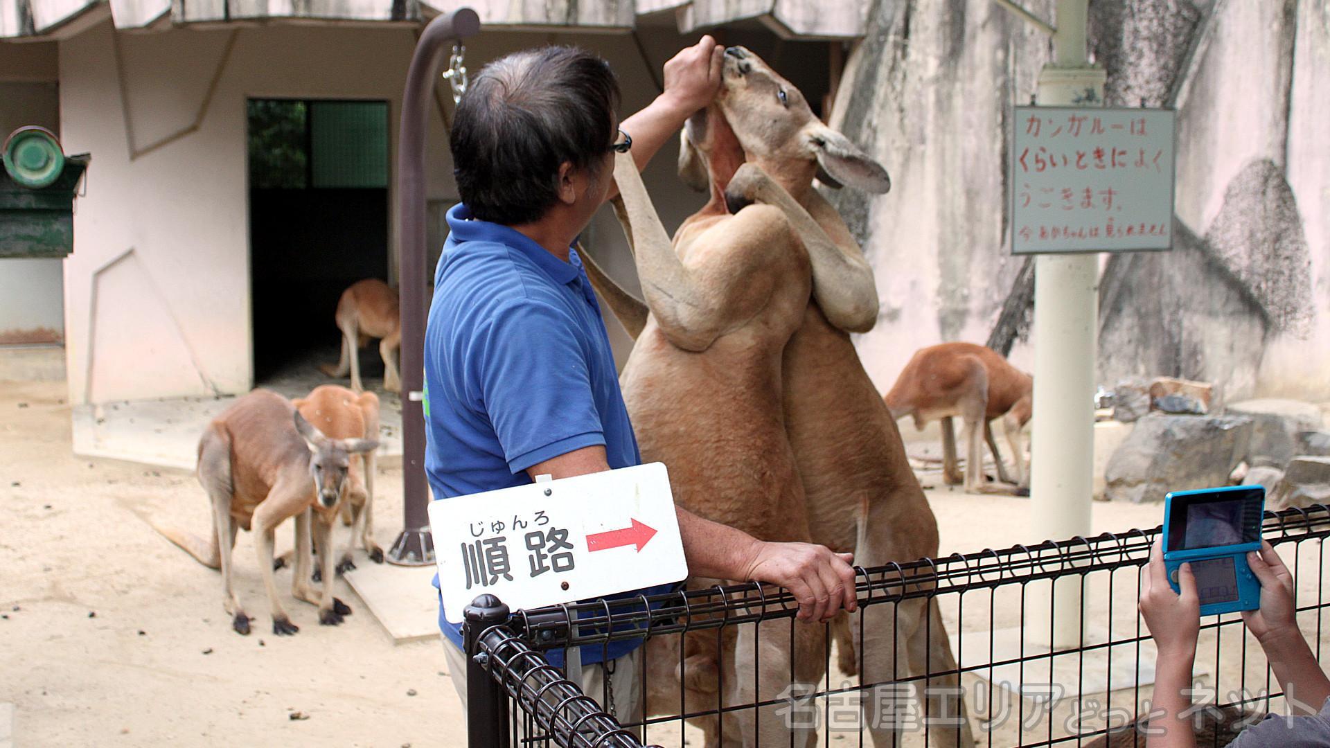 東山動植物園_秋祭り3